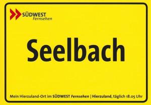 Aufkleber SWR Fernsehen 2011 (1280x897)