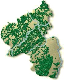 Waldverteilung in Rheinland-Pfalz Grafik: Landesforsten RLP