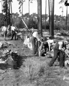1947 | Baumstämme für die Militärregierung: Deutsche Arbeitskolonnen fällen Bäume und bereiten sie für den Transport vor. Foto: Dr. Weinsheimer Bundesarchiv, Bild 183-S76406 / CC BY-SA Quelle: Wikimedia Commons