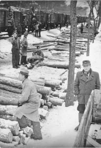 Zur Brennstoffversorgung von Berlin wurden Holzaktionen durchgeführt. Einen Teil des eingeschlagenen Holzes erhielten die Helfer für den persönlichen Bedarf. 1948 | Verladung von Holz am Bahnhof Rheinsberg Foto: Otto Donath Bundesarchiv, Bild 183-M1203-320 / CC BY-SA Quelle: Wikimedia Commons